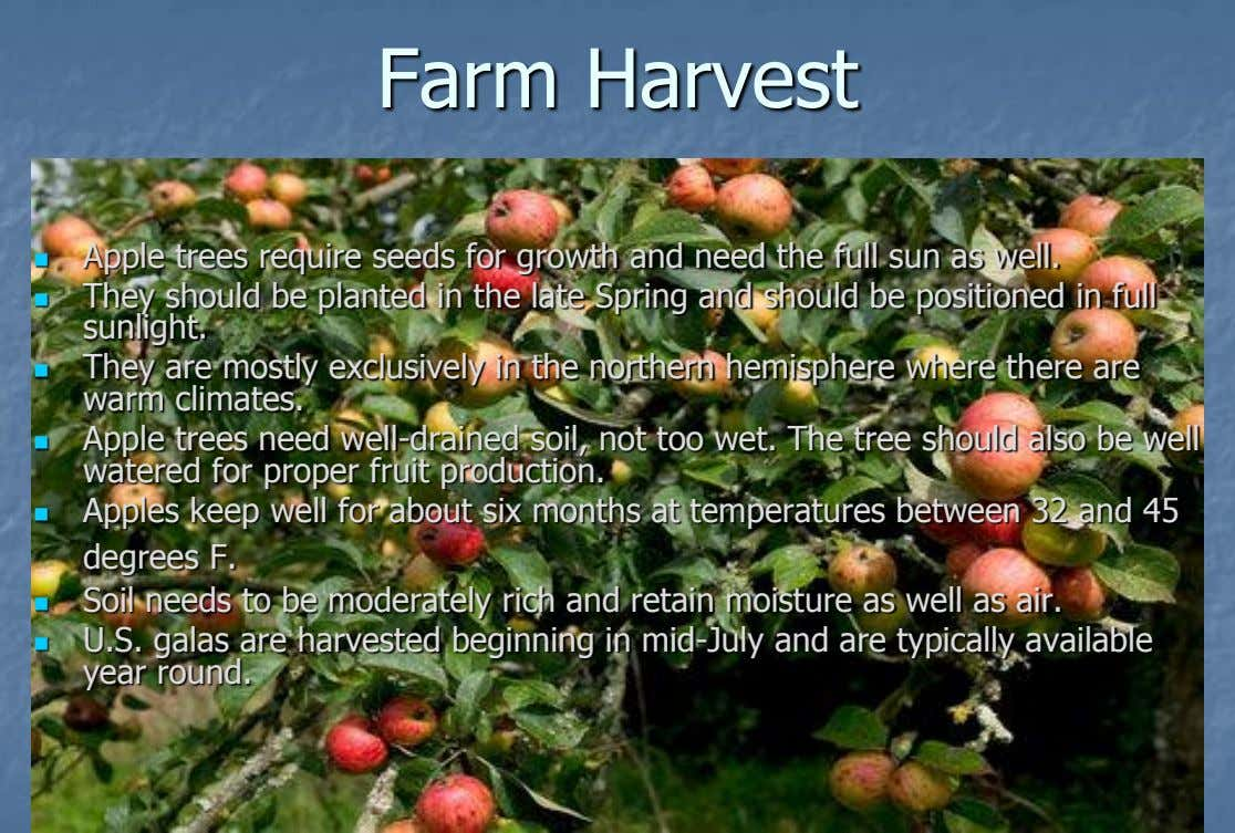Farm Harvest Apple trees require seeds for growth and need the full sun as well. 