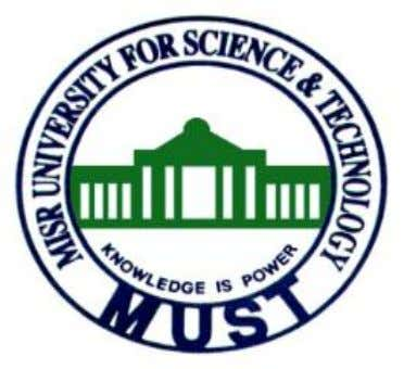 Misr University for Science and Technology Faculty of Engineering Department of Electronic & Communications ECE