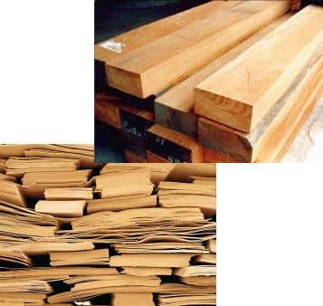 including: Solid sawn sections, Veneers (laminated), Plywoods (laminated) and Wood panels (moulded) 25 ARBE2100 Week 3