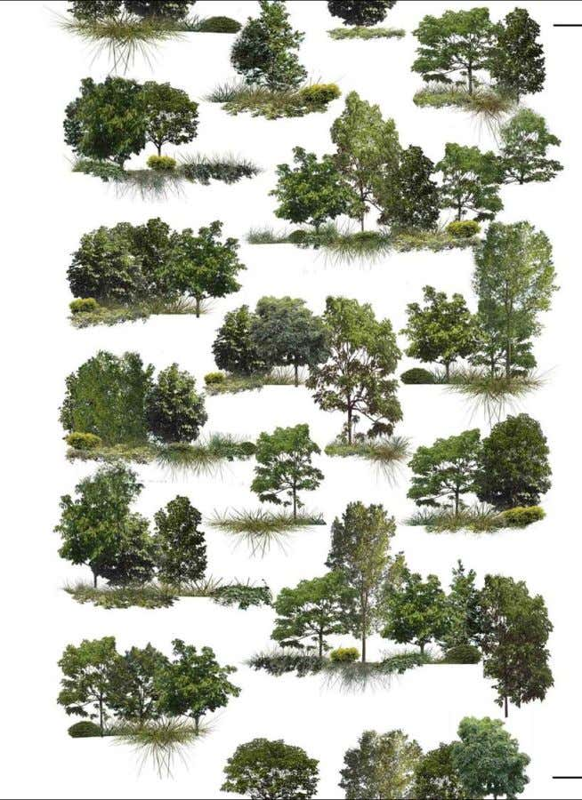 MORETHAN700TREES: 480 BIG AND MEDIUM SIZE TREES, 250 SMALL SIZE TREES, 11.000 GROUNDCOVER PLANTS, 5.000
