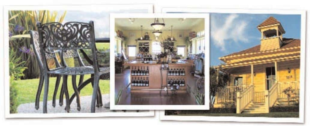 WINE COUNTRY NEWS WINE COUNTRY THIS WEEK B AILEYANA / tangent Baileyana and tangent winemaker, Christian
