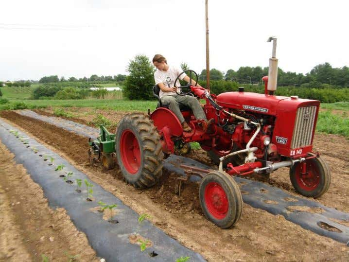 Figure 6. Farmall 140 set up for cultivating between rows of plastic. GPS-based Automatic Guidance