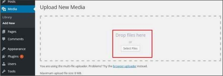 : Then, click on Select Files option to select the files from your local storage as