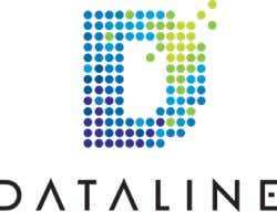 Dataline: A Buyer's Guide DATA TYPES : Auto, Demographic, Financial, Mobile, Modeling, Seasonal Dataline Data