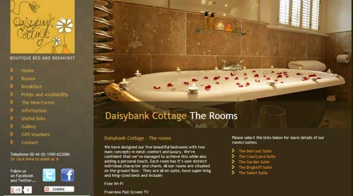 P a g e | 12 Figure 6 Snapshot of Daisybank website communicating 'Luxury' USP Figure
