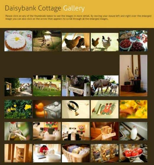 P a g e | 13 Figure 8 Snapshot of Daisybank Gallery page communicating highlighting the