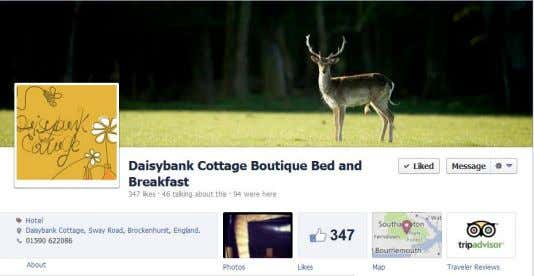 website and brand image, and also links with Trip Advisor. Figure 20 Daisybank Cottage Facebook page