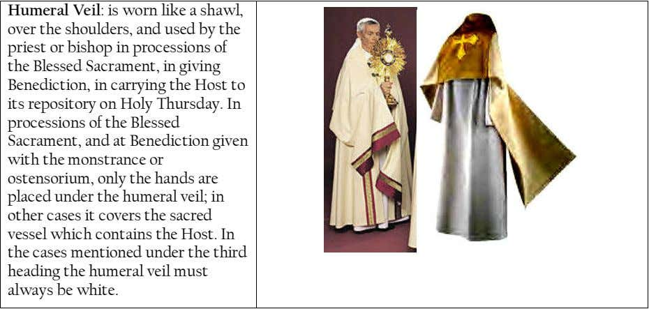 Humeral Veil: is worn like a shawl, over the shoulders, and used by the priest