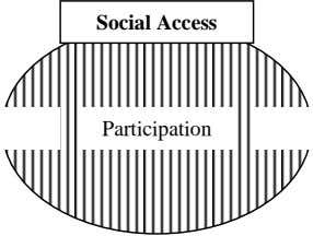 Social Access Participation