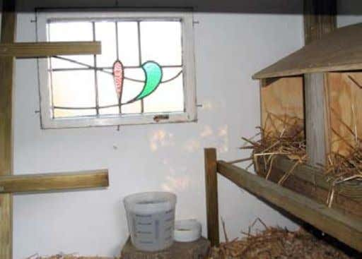 A well-maintained coop, which includes roosting space (right), promotes growth and good health. Plans for
