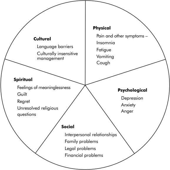 Physical Cultural Language barriers Culturally insensitive management Pain and other symptoms – Insomnia Fatigue Vomiting Cough