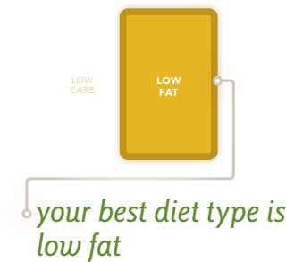 low Low carb fat your best diet type is low fat