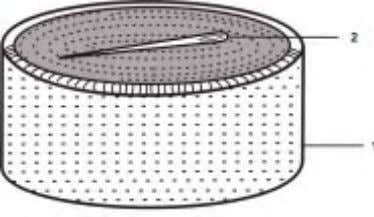 The sewing needle makes a small depression in the surface. Fig. 1.16 Needle Floating on water