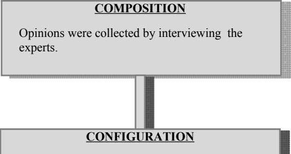 COMPOSITION Opinions were collected by interviewing the experts. CONFIGURATION CONSOLIDATION