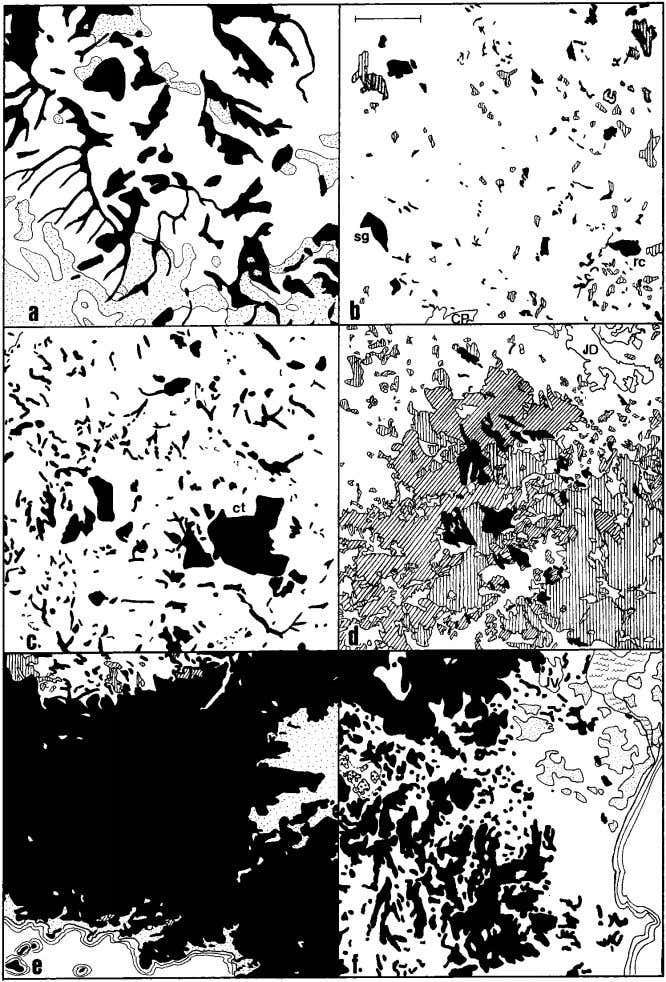 790 Morellato and Haddad FIGURE 3. Variously fragmented forest landscapes in the Brazilian Atlantic Forest (black