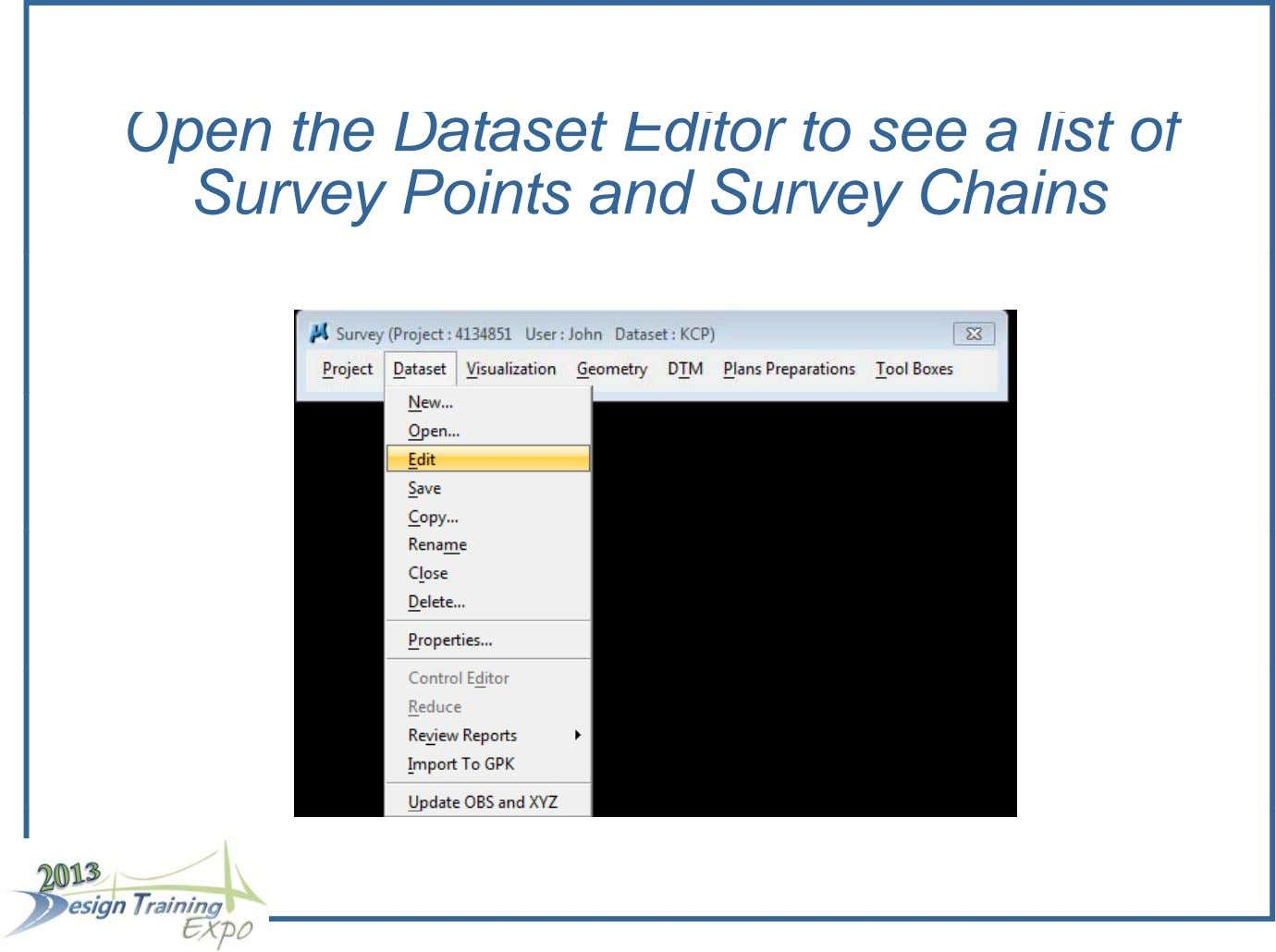 Open the Dataset Editor to see a list of Survey Points and Survey Chains