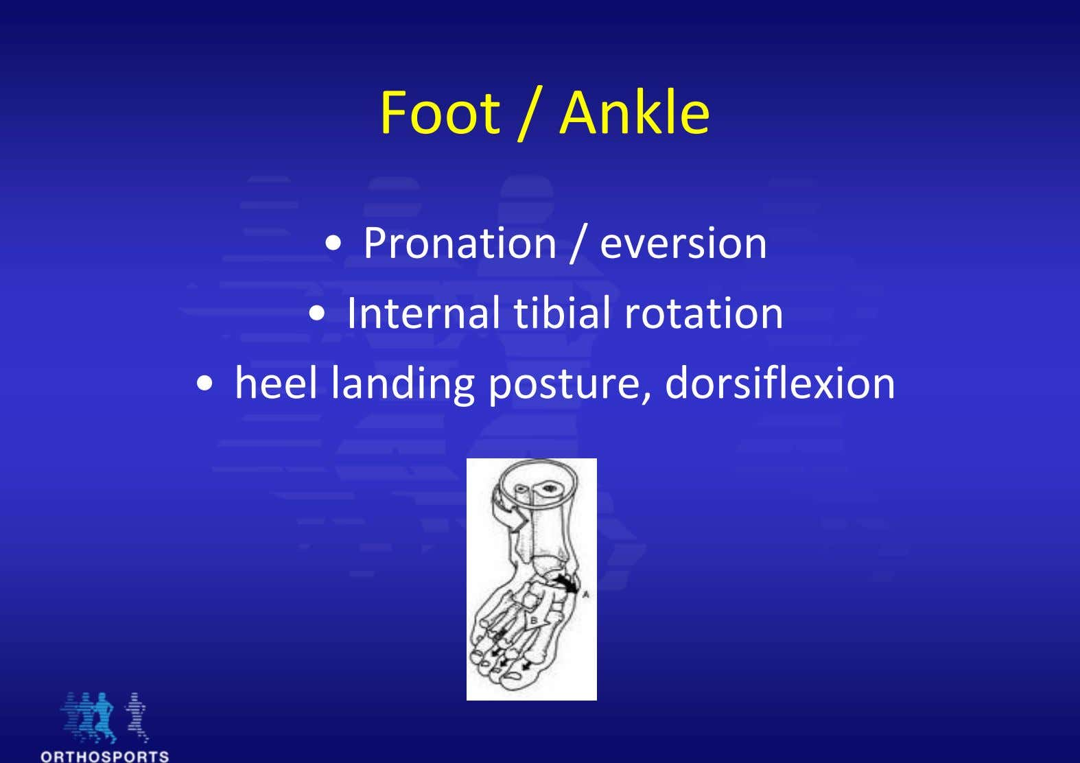 Foot / Ankle • Pronation / eversion • Internal tibial rotation • heel landing posture,