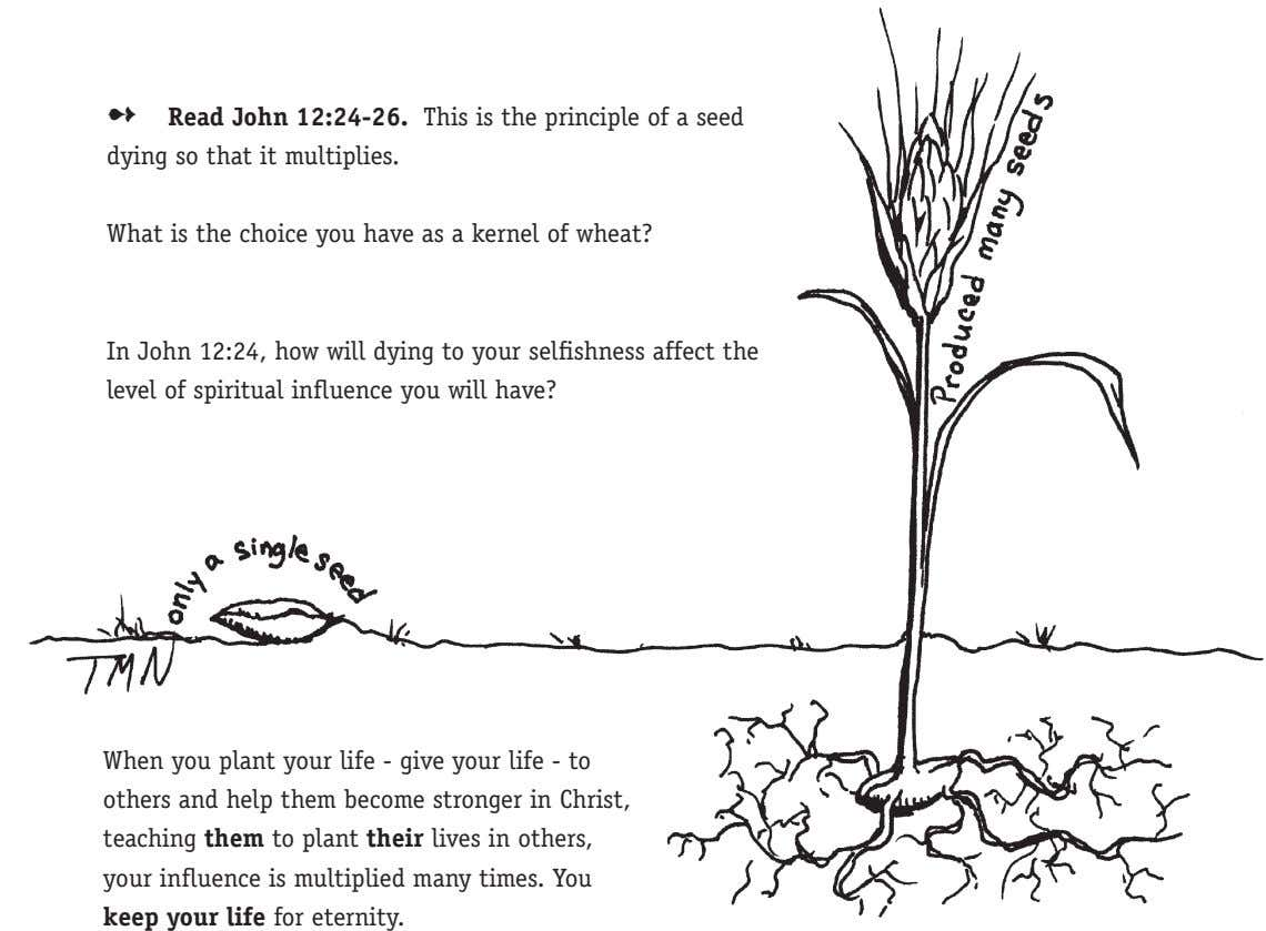 Read John 12:24-26. This is the principle of a seed dying so that it multiplies.