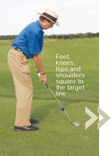 Feet, knees, hips and shoulders square to the target line
