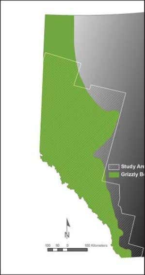 information, combined with GIS habitat basemaps and grizzly Grizzly bear range and study area in Alberta,