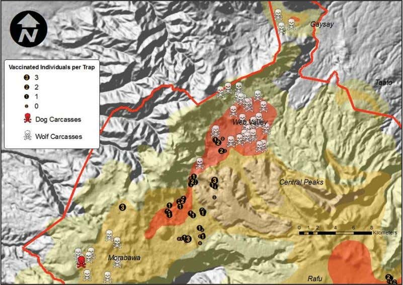 Figure 1: An overview of the Web Valley and Morebawa, showing wolf deaths caused by