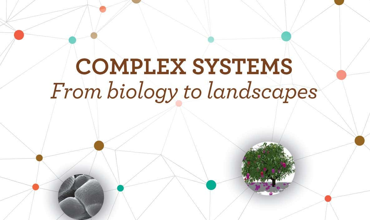 COMPLEX SYSTEMS From biology to landscapes