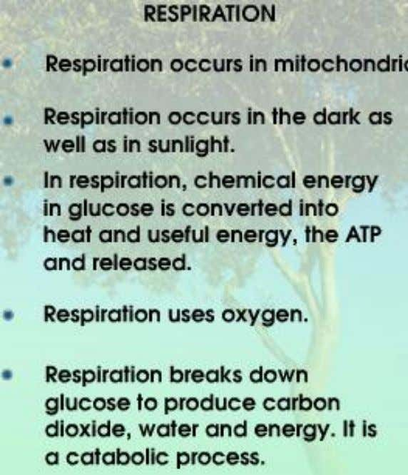 1. The differences of photosynthesis and respiration are: