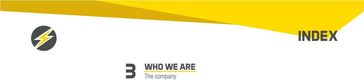 INDEX 3 WHO WE ARE The company