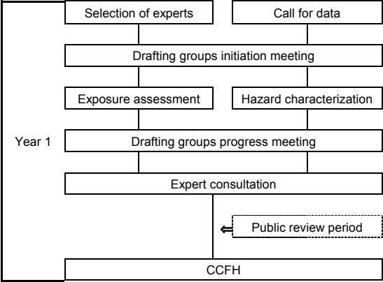 Selection of experts Call for data Drafting groups initiation meeting Exposure assessment Hazard characterization