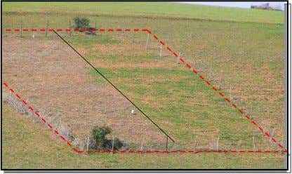 MINIMUM TILLAGE The North West of Morocco is characterized by a strong variation in seasonal rainfall
