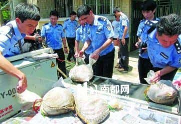 Read More Over 40 pangolins rescued in a car accident Sina.com.cn, August 1 s t 2013-