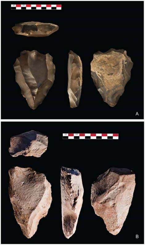PLoS ONE | www.plosone.org 7 The Nubian Complex of Dhofar Figure 6. Nubian Type 1 cores
