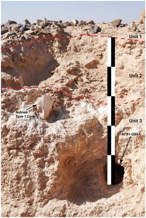 Figure 8. Photo of buried Nubian Type 1 core in situ. Position of artifact is
