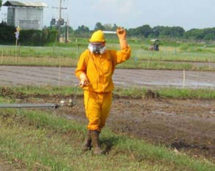 Guidelines for DSR in the Eastern Gangetic Plains of India Protective clothing for spraying—in the lower