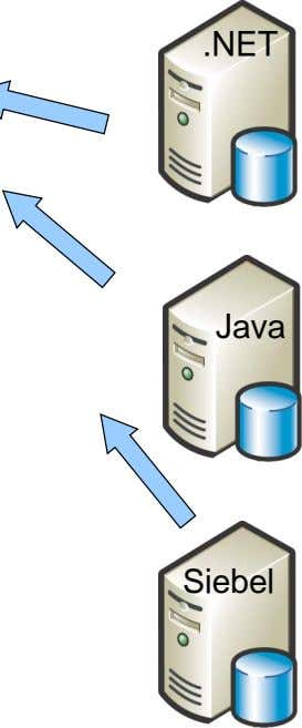 .NET Java Siebel