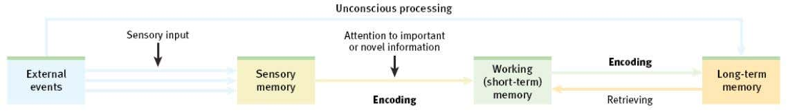 Processing Automatic OR Processing Effortful