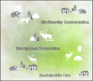 of economic land use with biodiversity conservation. Fig. 2.5. Bioregional Approach (BA) Ecological Zonation and