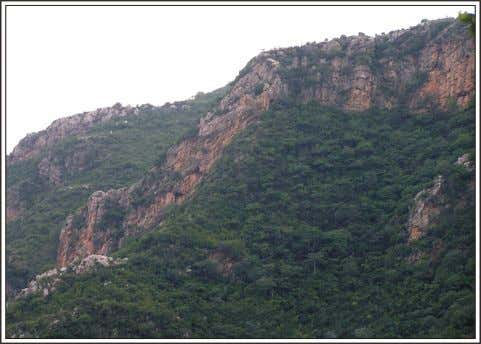 from Islamabad city up to the Murree town (Fatima 1999). Fig. 3.4. Topography of Margallah Hills