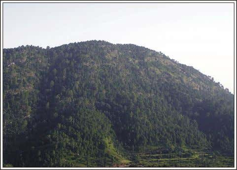 CHAPTER 3 MATERIALS AND METHODS 3.1.3. Climate Fig. 3.5. A View of Chirani Peak (1604 m)