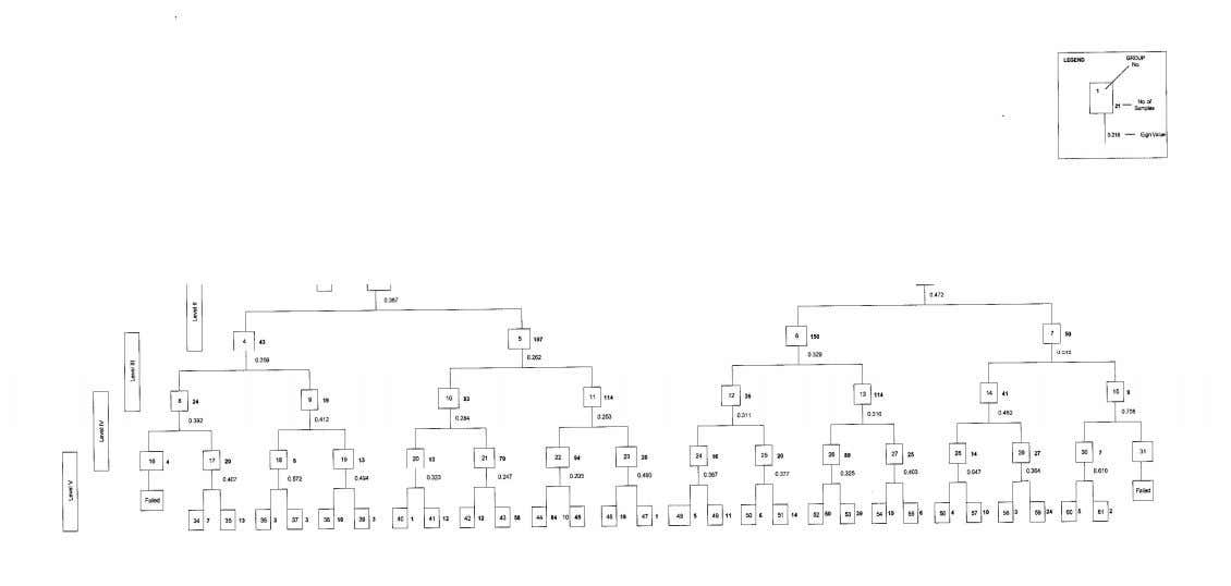 Fig. 4.1. Dendrogram Showing TWINSPAN Vegetation Classification at Five Levels