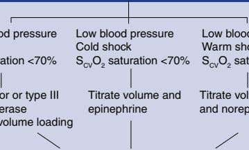 Low blood pressure Cold shock S CV O 2 saturation <70% Titrate volume and epinephrine