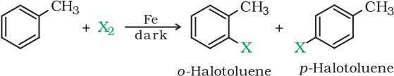 of Lewis acid catalysts like iron or iron(III) chloride. (c) The ortho and para isomers can