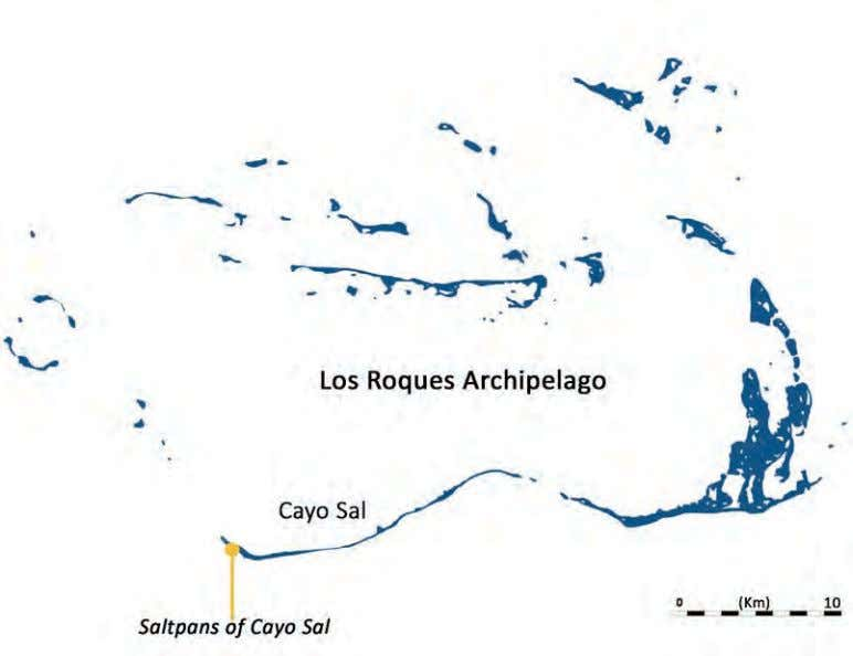 FIRST INTERNATIONAL CONGRESS ON THE ANTHROPOLOGY OF SALT Figure 3. Saltpans at the top and Los