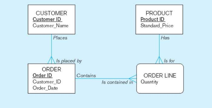 enterprise data model Segment of a project-level data model Chapter 1 © 2009 Pearson Education, Inc.