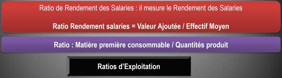 Ratio de Rendement des Salaries : il mesure le Rendement des Salaries Ratio Rendement salaries