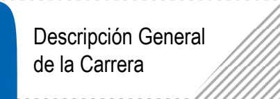 Descripción General de la Carrera