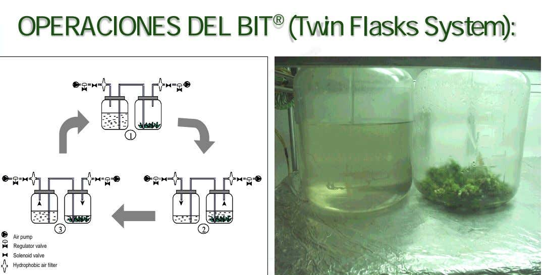 OPERACIONES DEL BIT ® (Twin Flasks System): 1 11 3 33 2 22 Air Air