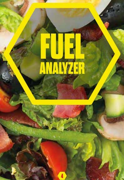FUEL ANALYZER 4