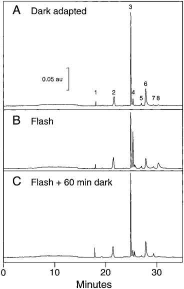 340 Saari IOVS, February 2000, Vol. 41, No. 2 F IGURE 5. HPLC [high-performance liquid chromatography]