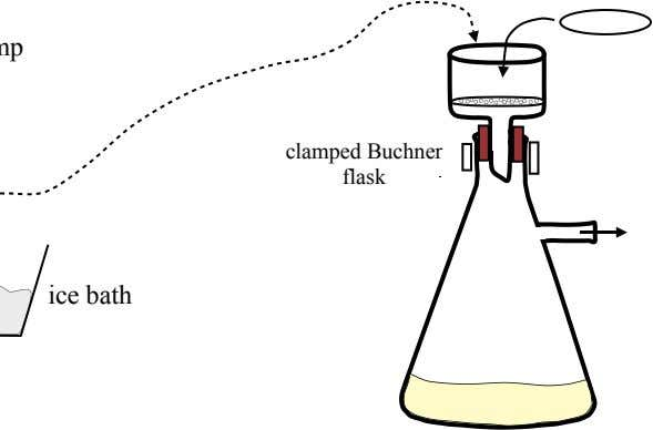 clamped Buchner flask ice bath